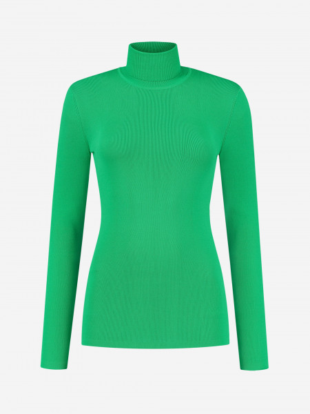 Basic fitted turtleneck top with long sleeves